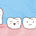 HealthyTeeth-Tooth-Development